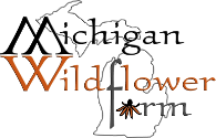 Michigan Wildflower Farm